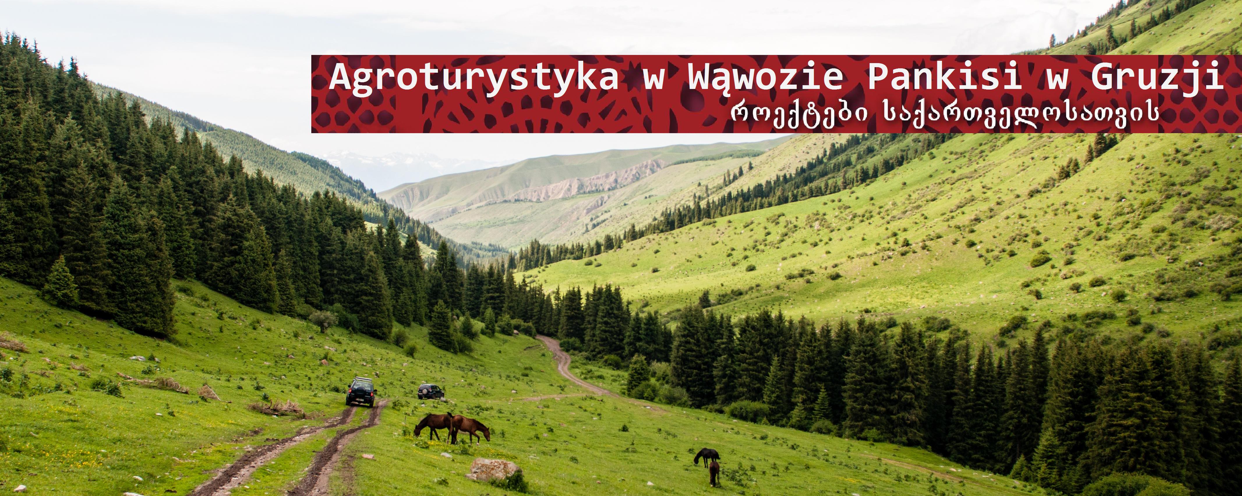 Agroturystyka irozwój społeczności lokalnej wPankisi