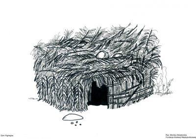 Dom Pigmejów (Afryka Środkowa)