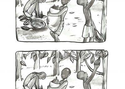 Zbiory kakaowca