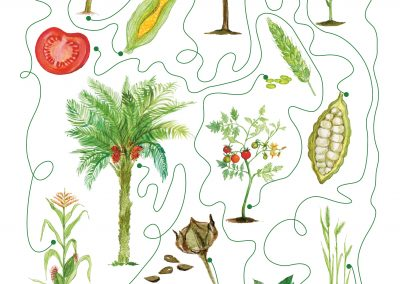 Rośliny świata